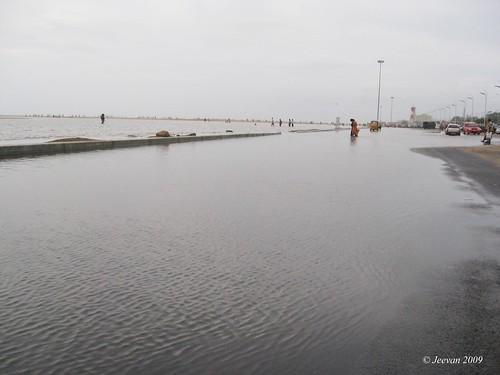 State of marina