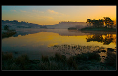 Knapps Again. (ericwyllie) Tags: morning trees mist colour weather fog clouds sunrise landscape dawn scotland bravo background 2008 kilmacolm gloaming inverclyde knappsloch