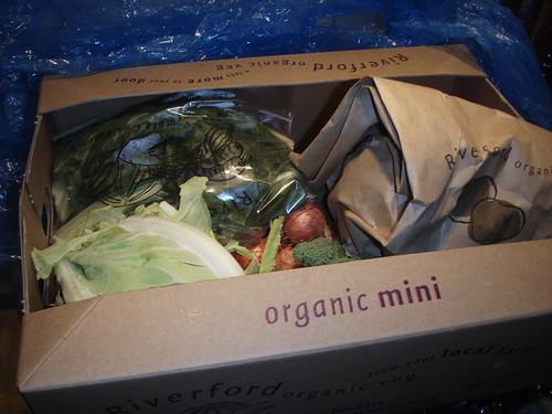 Organic Mini Box