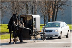 Amish Taxpayers