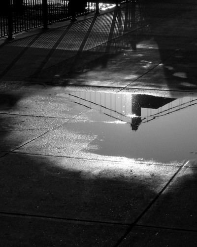 Bay Bridge Reflection BW