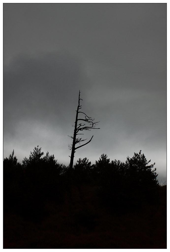 壞天氣又來了
