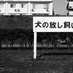 Tokyo 1723 thumbnail