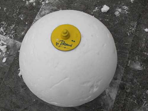 snowball with bernt's autograft willysphere