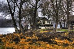 golden december (Mylos pics) Tags: trees winter colors danube hdr dunav vikendica 5xp sombor pentaxk10d anawesomeshot daraifok bezdan