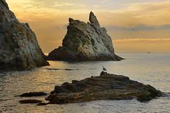 Cala S'Aguia (Diego M.C) Tags: costabrava mediterraneo paisaje playa amanecer calasaguia landscape beach sunset marcodigital