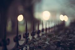 A fence in the night - HFF (pierfrancescacasadio) Tags: zenith helios402 85mm helios fence hff fencefriday 09022017840a0076