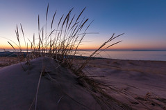 dunegrass, sleeping bear dunes (phatwhistle) Tags: tokina sleepingbeardunes sunset beach michigan dunegrass sky dunes