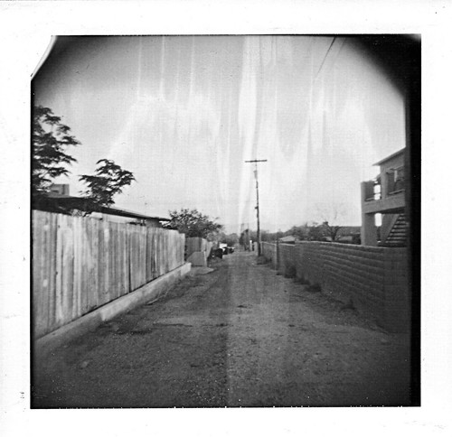 Holgaroid Alley BW 66/365