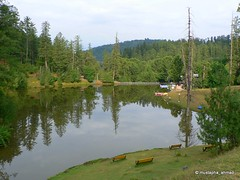 Banjosa Lake - Rawalakot - Kashmir Pakistan (mustapha_ahmad) Tags: trees pakistan lake reflection tourism water landscape kashmir ajk rawalakot banjosa colorsofpakistan