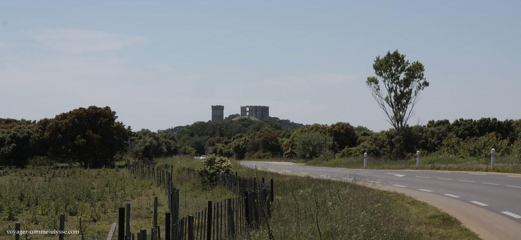 Au bout de la route, l'Abbaye de Montmajour