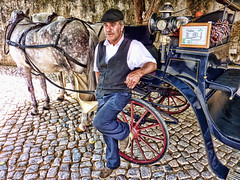 Coachman (BongoInc) Tags: portrait horse portugal monument pose coach sintra wideangle tourguide madeinportugal ilustrarportugal