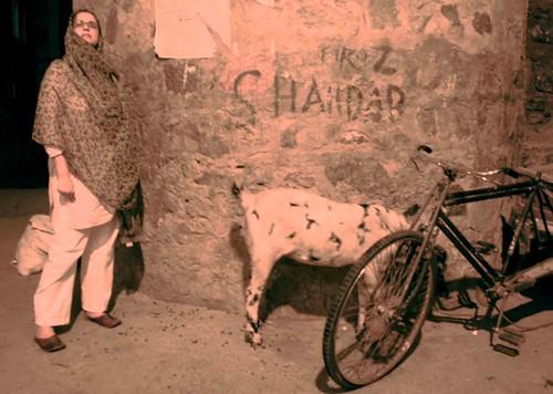 Maharani Elizabeth
