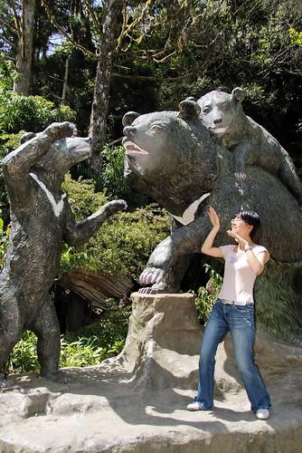 熊出沒、注意!