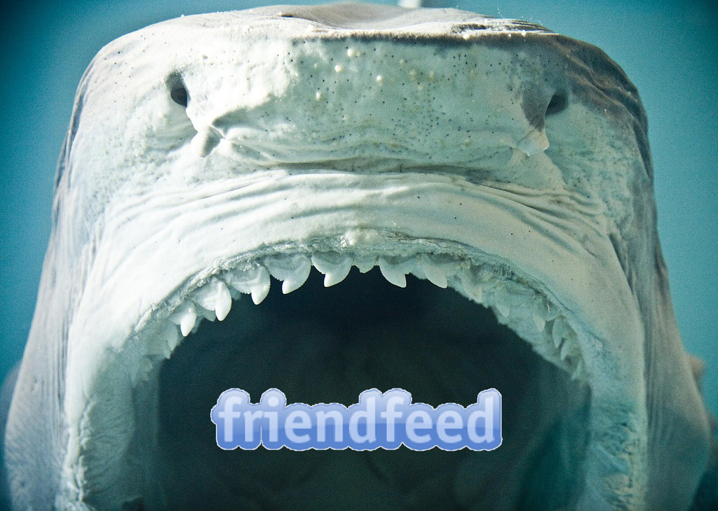 Facebook Aquires FriendFeed
