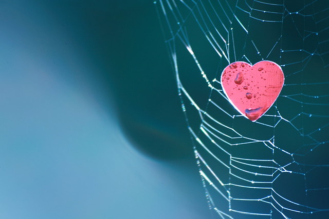 Captured your Heart