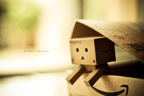 206/365: Danbo Awakes by [ embr ].