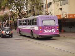 Fucsia trolley (Upper Uhs) Tags: city cidade bus argentina argentine trolley transport ciudad mendoza fucsia transporte argentinien cittá trole cuyo