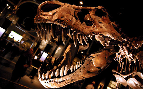T-Rex by DCZwick, on Flickr