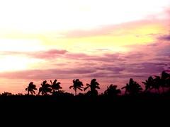 Gentle winds (Ani Carrington) Tags: sunset red clouds palms mar agua palmeras nubes bajacalifornia baja olas pacífico oceano