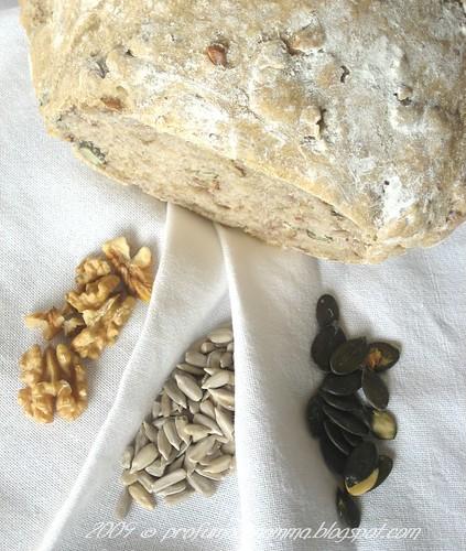 Pane con semi e noci