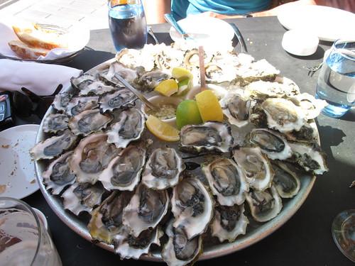 Four Dozen Oysters