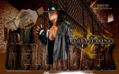 wrestling wallpaper. TNA wrestling wallpaper