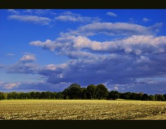 blue_sky (freddylong) Tags: blue trees orange white tree nature yellow clouds landscape bomen blauw natuur wolken geel wit landschap creations naturescenes nikond60