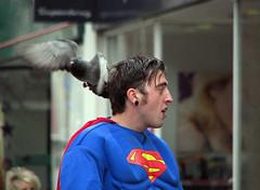 Pigeon attacks Superman (The Image Den) Tags: people pigeon candid attack streetphotography superman southampton captionable