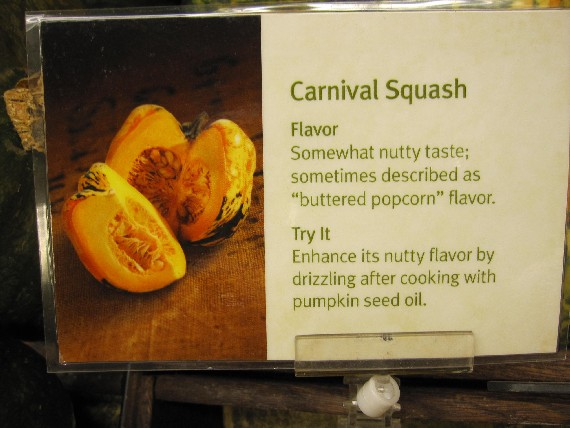 Carnival Squash