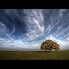 _____O__ (Paul Petruck) Tags: blue autumn sky tree green fall nature landscape seasons hdr
