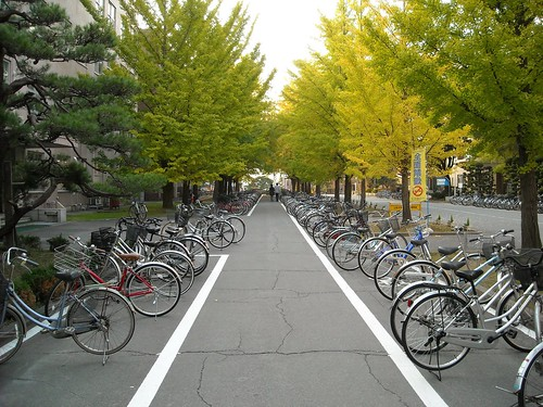 Yamagata University in Japan
