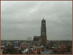 Er is een duif gevallen van de Dom (mefeather) Tags: city trees sky church nature clouds bomen utrecht domtoren dom nederland thenetherlands natuur wolken lucht domkerk kerk stad domtower nederlandvandaag