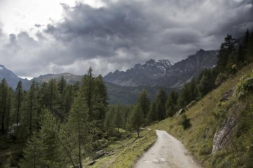 Road to Crampiolo #1