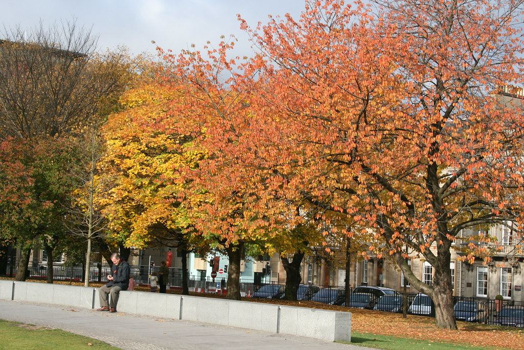 Colours in St Andrew's Square