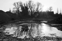 Ice, Reflections & me vs the sun (bm^) Tags: light blackandwhite bw sun white black ice reflections licht blackwhite nikon belgium belgique zwartwit decay belgi westvlaanderen zwart wit zon kortrijk tegenlicht ijs courtrai verval d90 reflecties blackwhitephotos westernflanders nikond90bw