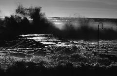 Just me (Emmanuele Contini) Tags: sea mare liguria justme imperia tempesta sturm contnibb sanlorenzoalmare