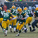 Aaron Rodgers (12) hands off to Ryan Grant (25)