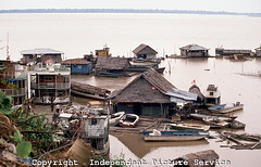 JK000471 - Floating homes and boats near Iquitos Harbor on the Amazon River, Peru (Independent Picture Service) Tags: city houses homes people peru latinamerica southamerica water architecture buildings boats outside outdoors community exterior village cities neighborhood transportation tropical thatchedroof tropics belen houseboats shantytown peruvian dwellings southamerican urbanscene urbanviews amazonriver privateresidence floatinghomes traditionalbuilding amazonregion builtstructures independentpictureservice iquitosharbor maynasprovince johnrkreul privatedwellings