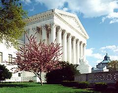 美国的法院在争什么?
