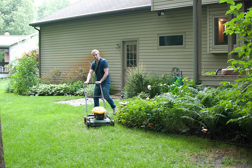 back-dwight mowing