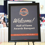 2017: Hall of Fame Awards Ceremony & Banquet thumbnail
