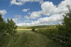 The Downs near Chisledon (Nikonsnapper) Tags: blue sky clouds downs landscape nikon scene nikkor tranquil 2470mm chisledon d700