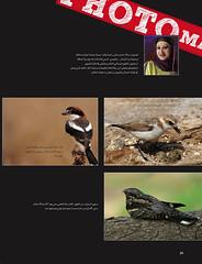 -         (Aziz J.Hayat   ) Tags: love magazine july kuwait juli   aziz q8  photomania       samera          abwab           jhayat   alkhekfa