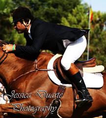 CSIO 4*, Centro Hipico Belmonte, 21/06/09 (Equestrian-life) Tags: horses horse portugal cavalos algarve cavalo belmonte portimão showjumping obstáculos