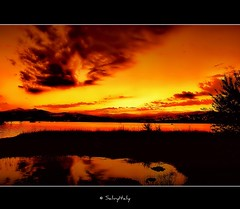 The wonders of the Lake (SalvyItaly) Tags: sunset italy alberi lago nikon europe flickr tramonto nuvole valle basilicata potenza estrellas dio colori vita luomo speranza profumo respiro creazione d40 salvezza freschezza abigfave senise platinumphoto superaplus flickraward certezza diamondclassphotographer sinni goldstaraward rubyphotographer mallmixstaraward salvyitaly lucaniabella montecotugno