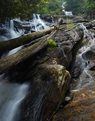 Holcomb Creek Falls (davidwilliamreed) Tags: county trees nature water creek georgia waterfall rocks long exposure falls rabun holcomb slowwater
