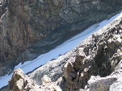 Dana Couloir (rhyang) Tags: hiking yosemitenationalpark tuolumnemeadows scrambling