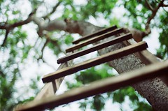 Going Up (saripdoll) Tags: art film analog nikon explore malaysia filmcamera frontpage analogphotography nikonf3 kedah rsm gurun autaut kodakcolourplus200 nikkorf14 negetivescan saripdoll