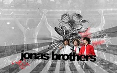 Jonas Brothers Wallpaper (awestruckkk) Tags: world desktop wallpaper adam me look lines joseph paul design vines eyes kevin tour graphic you brothers background nick jerry banner joe trying nicholas ii when times jonas siggy blend wylmite